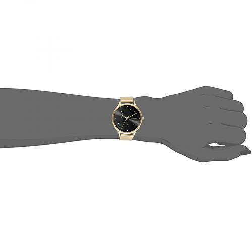 Женские часы SKAGEN SKW2385